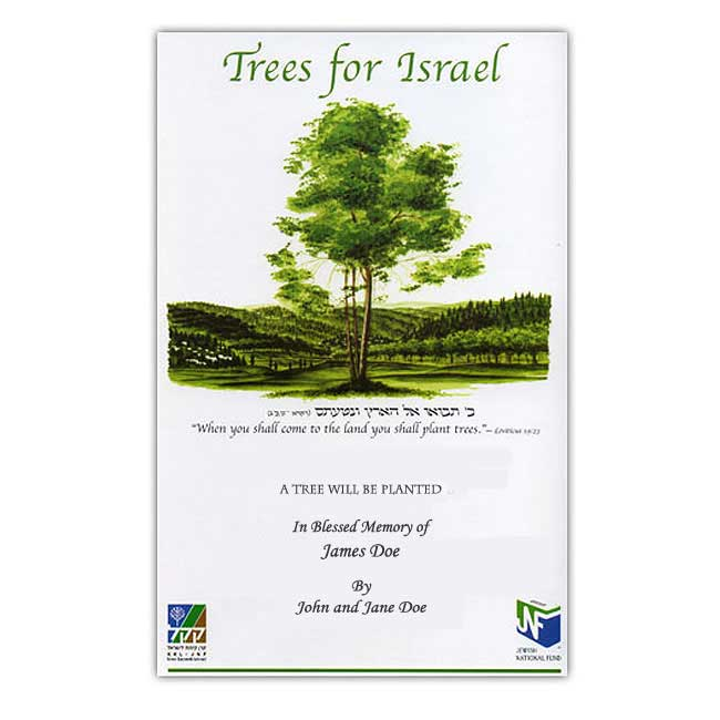 Plant a Tree Here