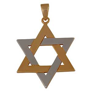 Yellow and White Gold-filled Star of David Pendant