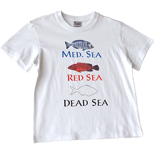Remeras para niños Med Sea, Red Sea Dead Sea