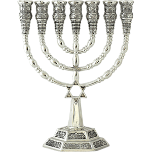 Silver Plated Star of David Menorah