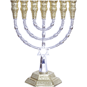 Silver and Gold Plated Star of David Menorah