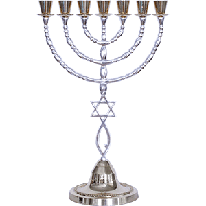 Extra Large Grafted In Menorah