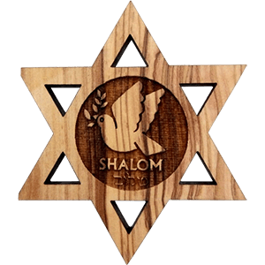 Shalom Dove Olive Wood David's Star Magnet