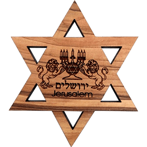 Lion of Judah David's Star Olive Wood Magnet