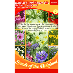 Holyland Wildflower Mix Seeds of the Holy Land