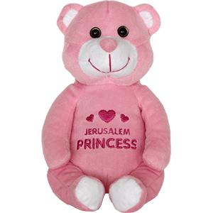 Princess Plush Sitting Bear