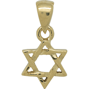 Entwined Star of David Gold Plated Pendant