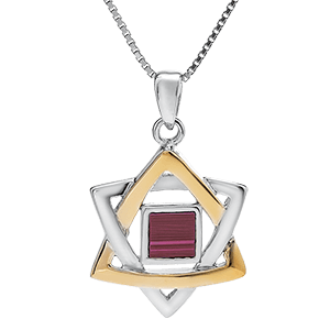 Nano Bible Necklace Silver and 9kt Gold Star of David