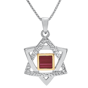 Nano Bible Necklace Silver Smoother and Hammered Star of David
