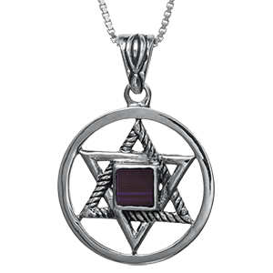 Nano Bible Necklace Silver Encircled Star of David