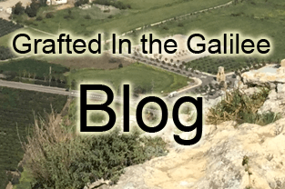 Blog Grafted In the Galilee