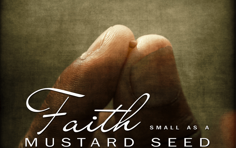 The Biblical Importance of the Mustard Seed and the Significance to the Believer's Faith